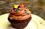 Dark Chocolate and Orange Cupcakes