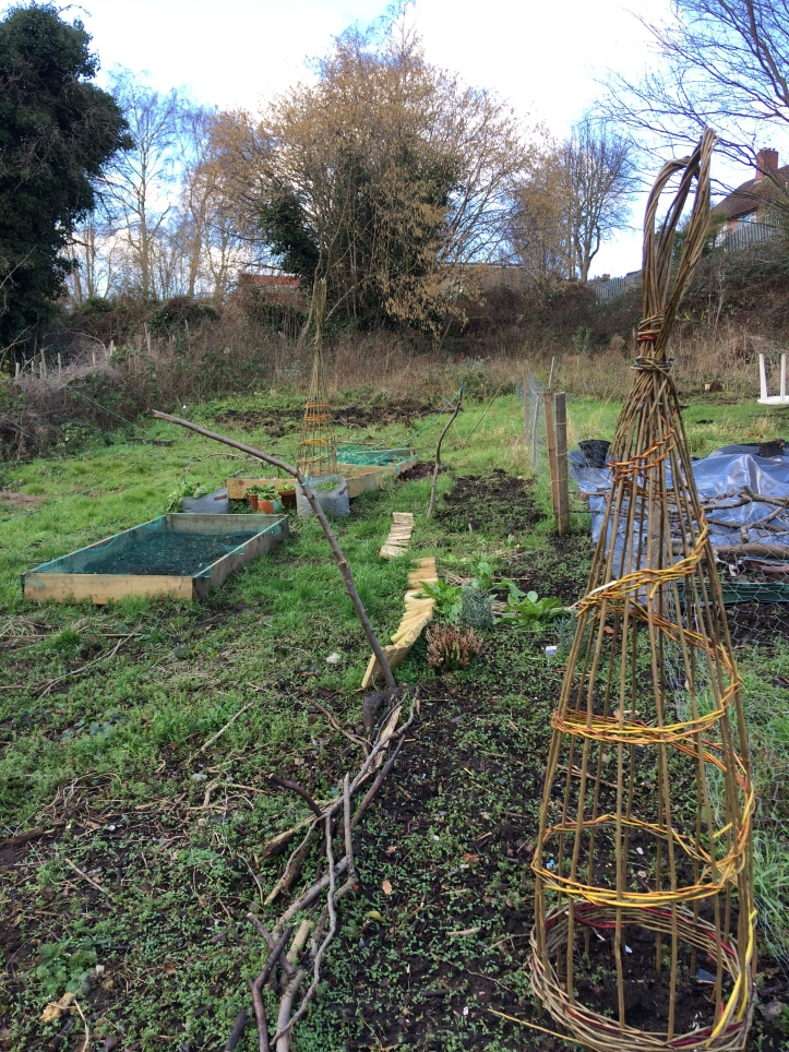 allotment winter2018