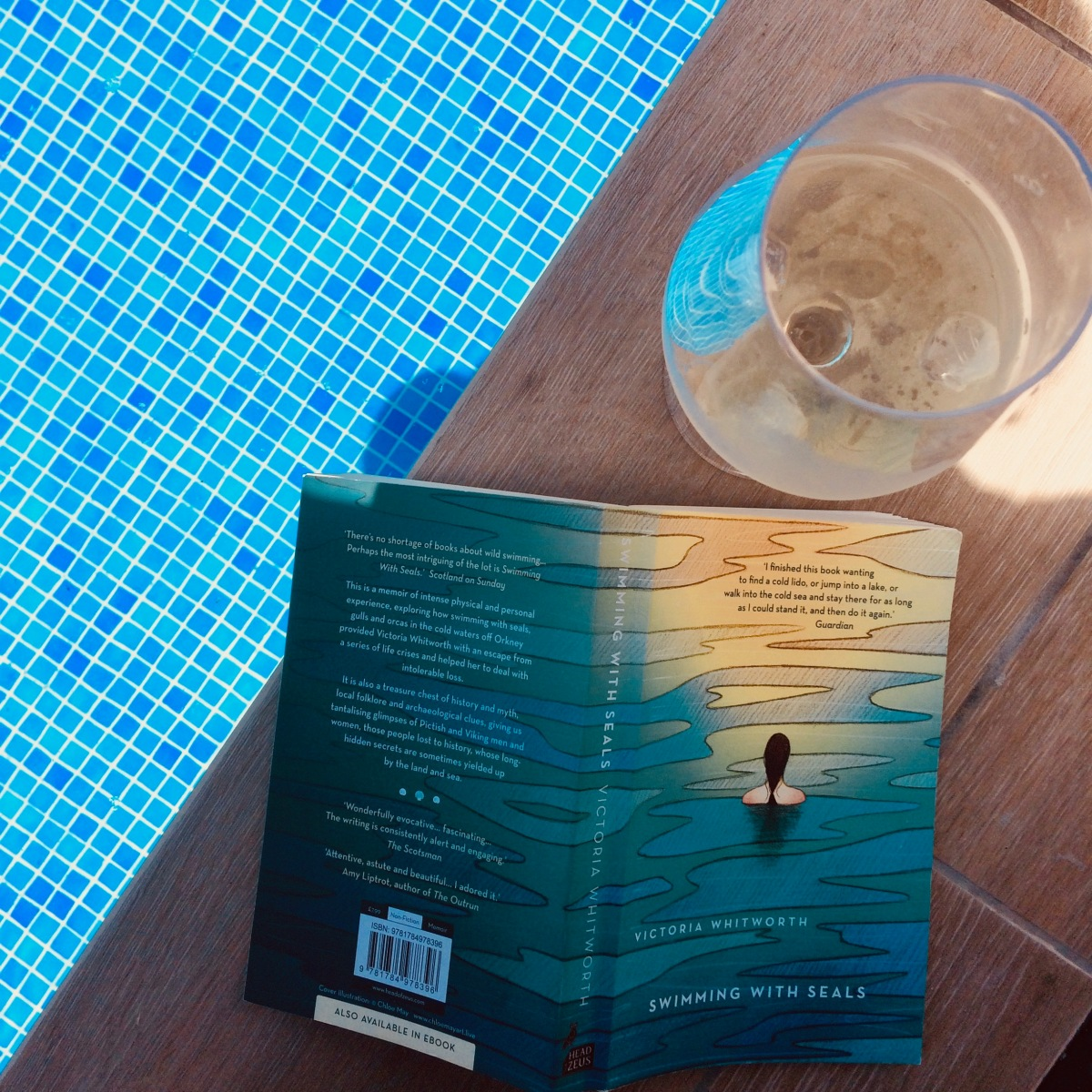 Swimming with Seals: A Review | Lexi Writes