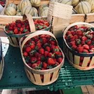 Carpentras Market 4